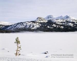Silver Lake. Carson Pass. California.