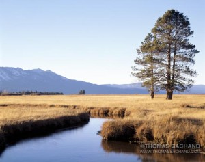 Truckee Meadow.  South Lake Tahoe, California