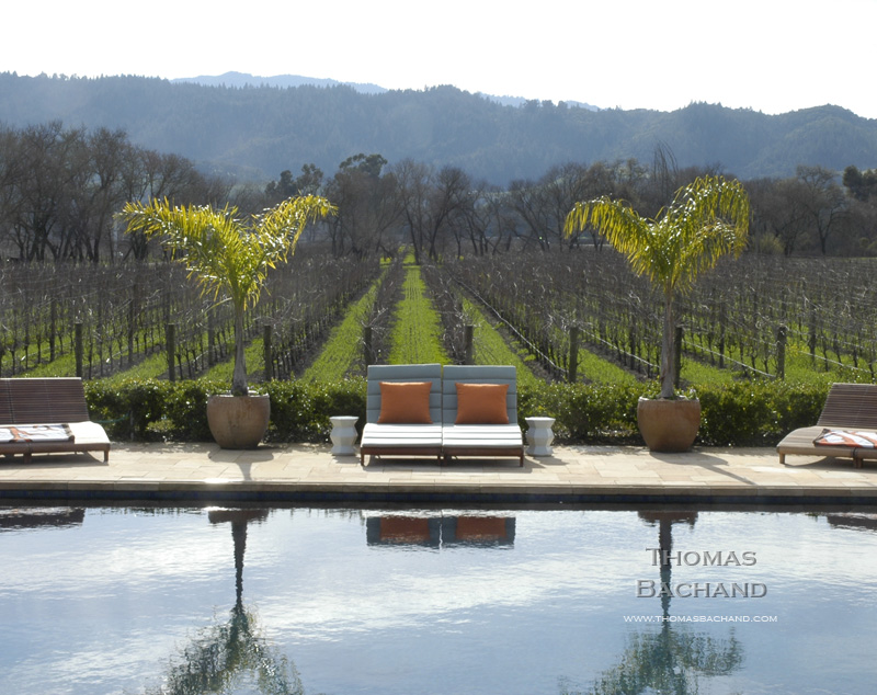 Poolside and vineyard. Napa.