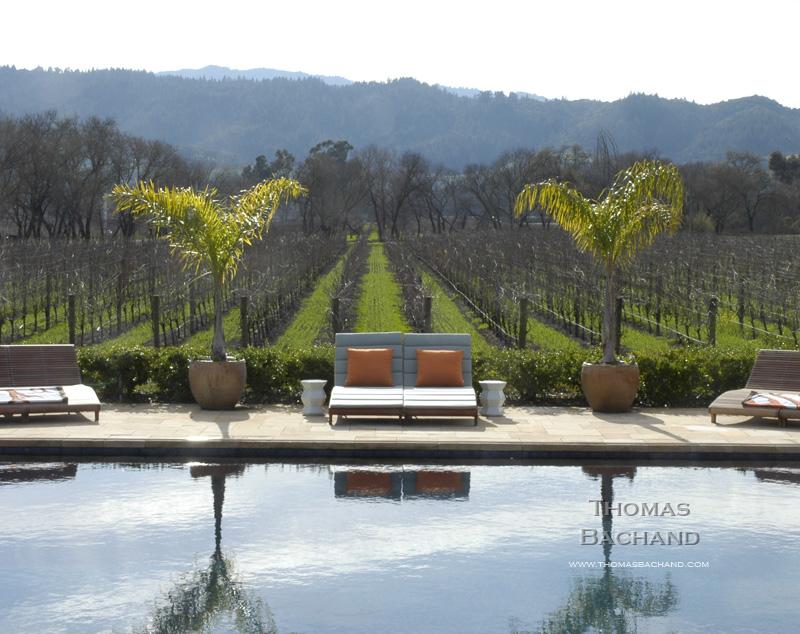 Poolside and vineyard. Napa.