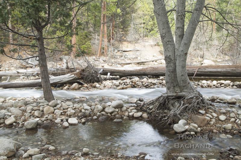 Late Autumn River. Yosemite National Park.