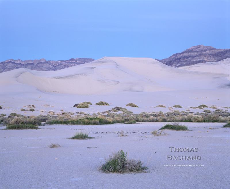 Dunes. Death Valley National Park.